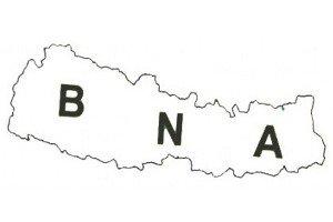 BNA-logo-550x1931.jpg