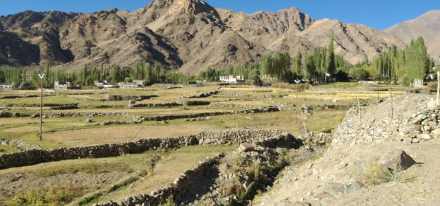 Kargil_village_and_people_1
