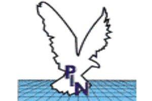 Pin-Nigeria-logo1.jpg