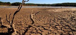 drought-5663396575-p.jpg