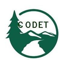 logo_CODET.jpg