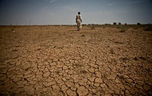 mauritania-drought-6909399053-p.jpg