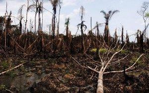 niger-delta-oil-spill-4560583670-p.jpg