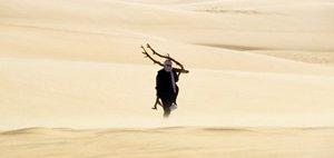 niger-desert-279233848-p.jpg