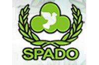 spado-p.jpg
