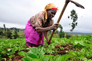 women-farming-5367322642-p.jpg