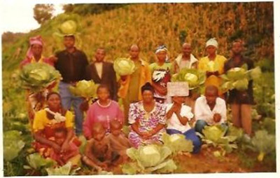 Vulnerable men and women brought together in a solidarity group which produces market garden products. They are in the process of producing cabbages on their community land. PEREX-CV trains them in this field so that they can become self-sufficient and improve their quality of life in Lubero.